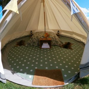 book deluxe bell tent glamping